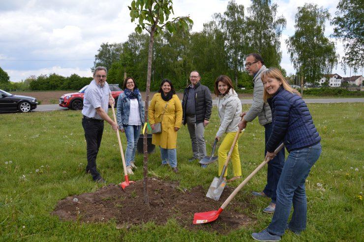 Aus Brillen werden Bäume – Obstbäume für unsere Region!